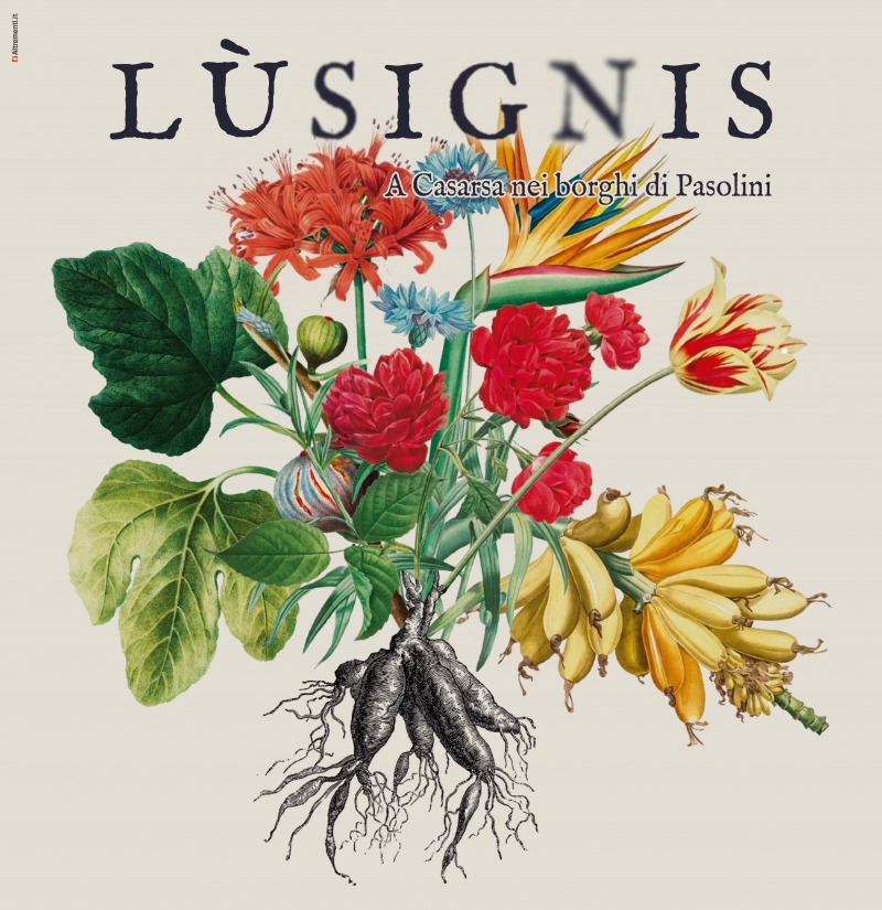 Lusignis